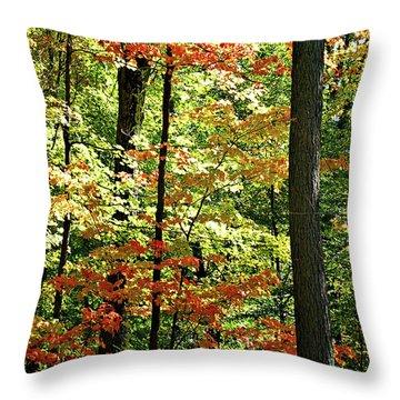 Simply Autumn Throw Pillow by Joan  Minchak