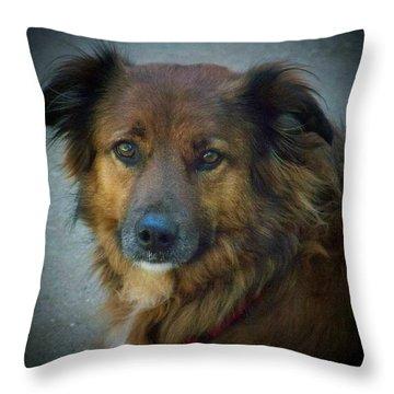 Simply Beautiful Throw Pillow by Deborah Montana