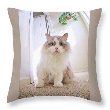 Simply Beautiful Throw Pillow