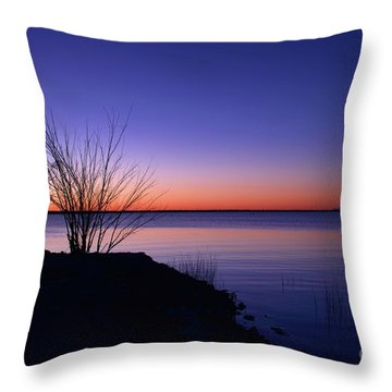 Simply Gentle Blue Throw Pillow