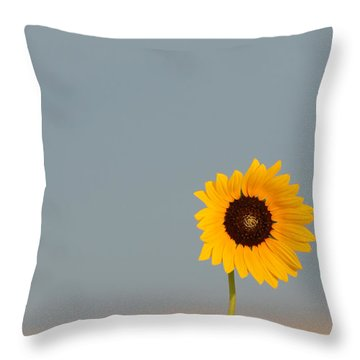 Simply Kansas Throw Pillow