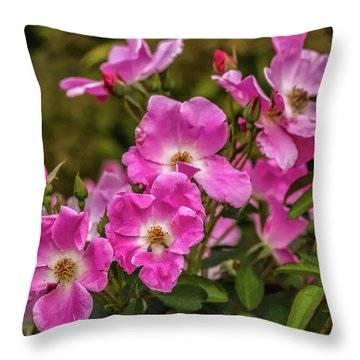 Simply Old-fashioned Throw Pillow