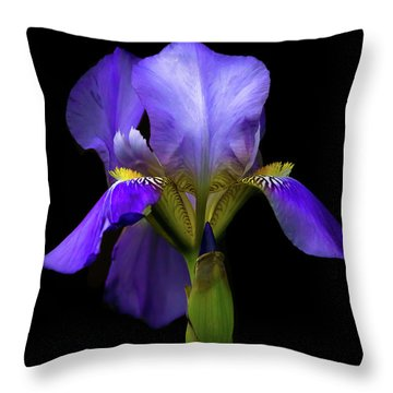 Simply Stunning Throw Pillow