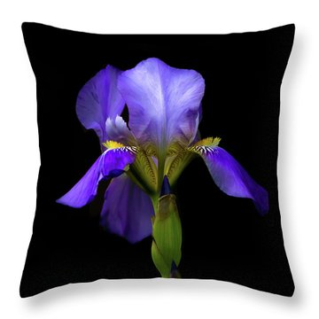 Simply Stunning Throw Pillow by Penny Meyers
