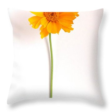 Simply Sunny Throw Pillow by Fred Wilson