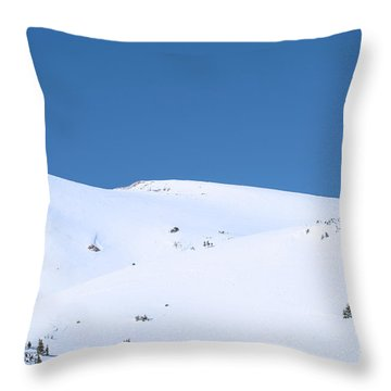 Throw Pillow featuring the photograph Simply Winter by Juli Scalzi