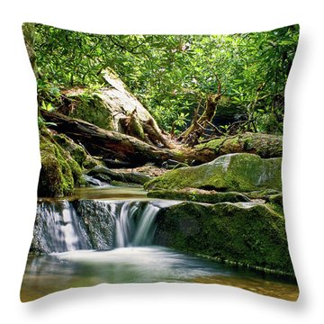 Throw Pillow featuring the photograph Sims Creek Waterfall by Meta Gatschenberger