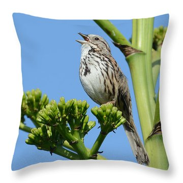 Throw Pillow featuring the photograph Sing A Song by Fraida Gutovich