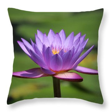 Singapore Flower Throw Pillow by Diane Height
