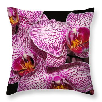 Singapore Orchid Throw Pillow