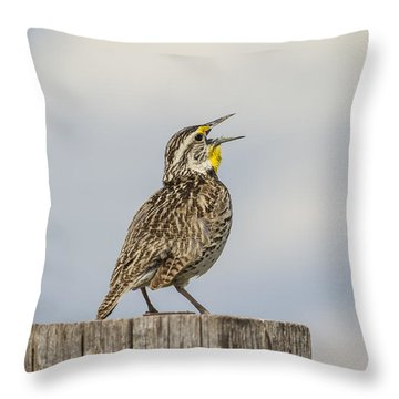 Singing A Song Throw Pillow by Thomas Young