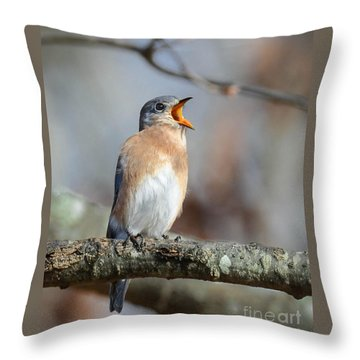 Singing This Song For You Throw Pillow by Amy Porter