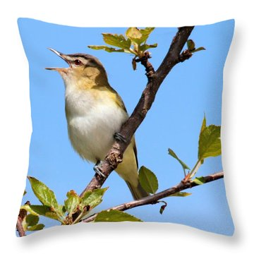 Singing Vireo Throw Pillow by Debbie Stahre