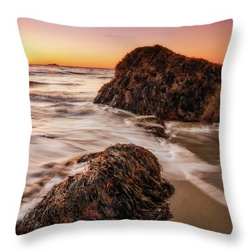 Throw Pillow featuring the photograph Singing Water, Singing Beach by Michael Hubley