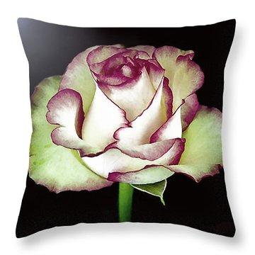 Single Beautiful Rose Throw Pillow