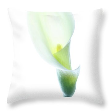 Throw Pillow featuring the photograph Single Cala Color by Rebecca Cozart