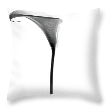 Single Cala Tall Black And Whte Throw Pillow by Rebecca Cozart