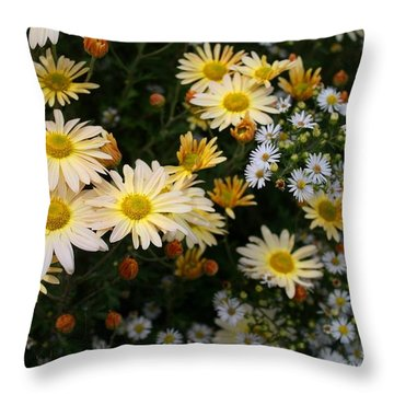 Throw Pillow featuring the photograph Single Chrysanthemums by Kathryn Meyer