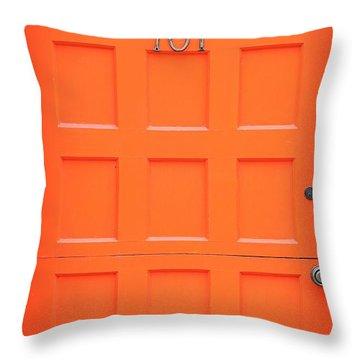 Single Door Throw Pillow