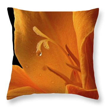 Throw Pillow featuring the photograph Single Drop by Jean Noren