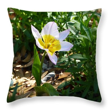 Single Flower - Simplify Series Throw Pillow by Carla Parris