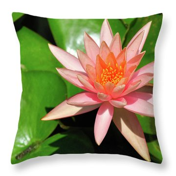 Single Flower Throw Pillow