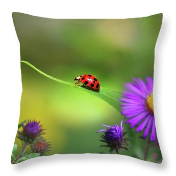 Single In Search Throw Pillow