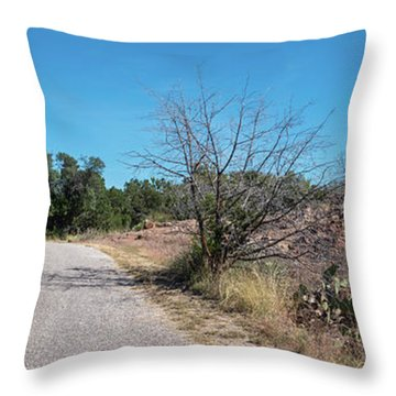 Single Lane Road In The Hill Country Throw Pillow
