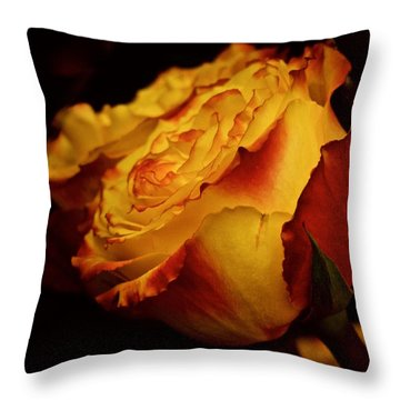 Throw Pillow featuring the photograph Single March Vintage Rose by Richard Cummings