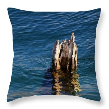 Single Old Piling 3 Vertical Throw Pillow