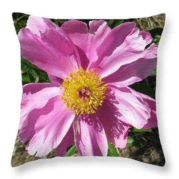 Single Pink Peony Throw Pillow