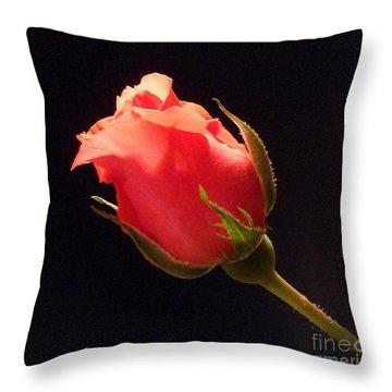 Single Pink Rose Bud Throw Pillow