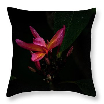 Single Red Plumeria Bloom Throw Pillow