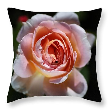 Single Romantic Rose  Throw Pillow