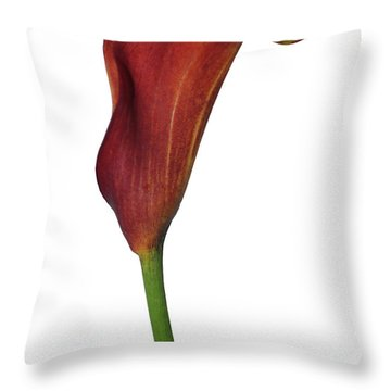 Single Rust Calla Lily Stem Throw Pillow by Heather Kirk