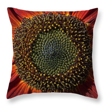 Single Sun Flower Throw Pillow