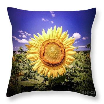 Single Sunflower Throw Pillow
