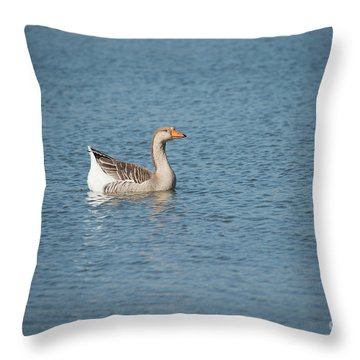 Throw Pillow featuring the photograph Single Swimmer by Wanda Krack