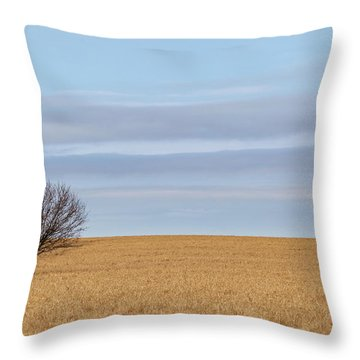 Single Tree In Large Field With Cloudy Skies Throw Pillow