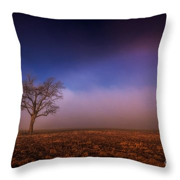 Single Tree In The Mississippi Delta Throw Pillow