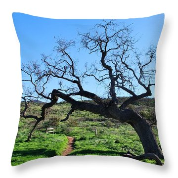 Single Tree Over Narrow Path Throw Pillow