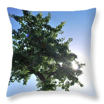 Single Tree - Sun And Blue Sky Throw Pillow