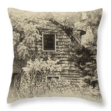 Single View Throw Pillow by Tamera James