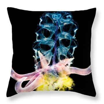 Siphonophore Colony Throw Pillow