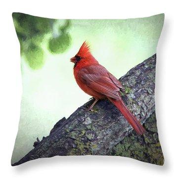 Sir Cardinal Throw Pillow