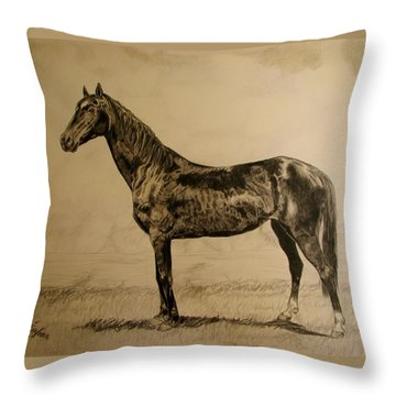 Throw Pillow featuring the drawing Sisi by Melita Safran
