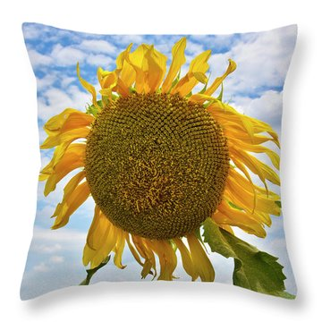 Sister Golden Hair Throw Pillow