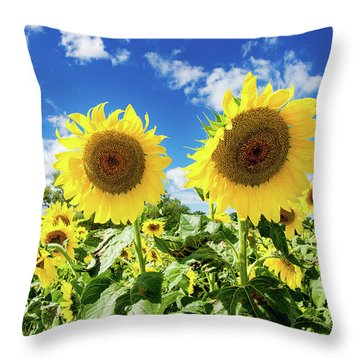 Sisters Throw Pillow by Greg Fortier