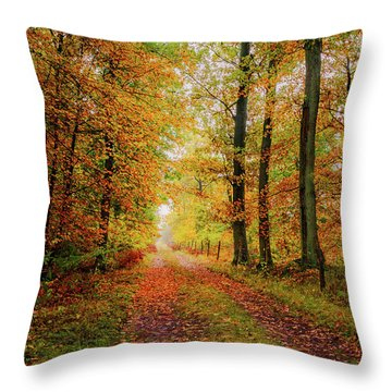 Throw Pillow featuring the photograph Site 6 by Dmytro Korol