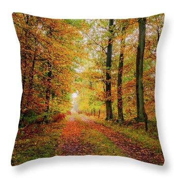 Site 6 Throw Pillow
